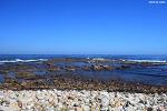 [남아공 여행] 희망봉(Cape of Good Hope), 자연과 역사가 한곳에