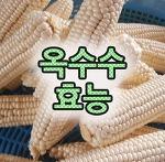 옥수수효능 여름철간식으로 좋은이유