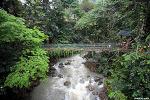 [말레이시아 코타키나발루 여행] 키나발루 산 당일치기 투어