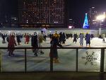 서울광장 스케이트장 야간에 구경하기