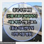 중국 우한폐렴(신종코로나바이러스) 서울 | 부산 | 대구 선별진료소(응급의료센터 및 지역거점병원)