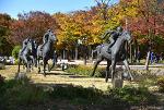 [서울 가볼만한 곳] 서울숲 공원 가을단풍 데이트