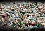 정말 심각한 미세플라스틱 오염의 역습/ 미세 플라스틱 생수?