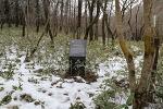 제주 4.3 역사 기행 - 사려니숲길. 이덕구 산전