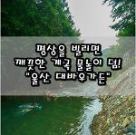 """[울산/울주/경남 계곡] 평상을 빌리면 깨끗한 계곡 물놀이는 덤! """"울산 대바우가든"""""""