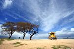 [하와이 마우이 여행] 볼드윈 비치 파크(Baldwin Beach Park), 현지인들이 찾는 해변