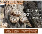 장흥 대표 특산품~ 장흥 표고버섯 판매 안내! 산지직송으로!