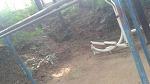 [이시각 행신동] 가라산공원에 어마무시한 철조망???