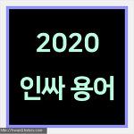 2020년 인싸용어 정리