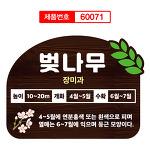 벚나무 봉숭아 식물이름표 수목표찰 60071