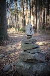 새해 첫 날, 순천 선암사 가는 길. 아름다운 산책로