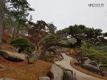 [한국/경기] 광주 화담숲 ② : 숲 테마원코스