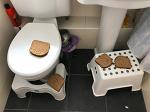 [친정부모님과의 동거 2일차] 식빵이 욕실로 간 사연