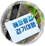 울산 재발견 해파랑길 걷기여행 2회차 -해파랑길 6코스 (2019-6-9(日))