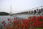 [예산여행] 국내에서 가장 긴 예당호 출렁다리