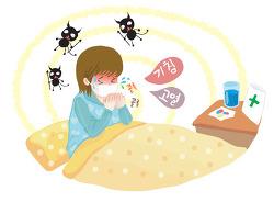 [국내 이슈] 독감의 모든것! 독감과 감기의 차이