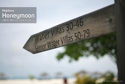 [몰디브-허니문] 무푸시 시니어 워터 빌라