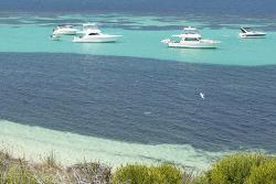 서호주 로트네스트 섬 (Rottnest Island) Western Australia