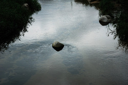 홍제천에 놓여진 바위