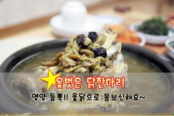 [용문동 맛집] '옻벗은 닭한마리'에서 옻닭 드시고 무더위 나세요!!