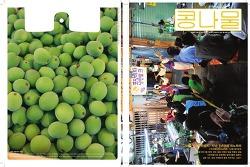콩나물 잡지 9 (2월호) - 수유문전성시 지난 1년의 파노라마