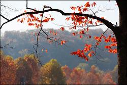 가을의 끝자락에서..