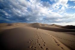 아름다운 고비사막