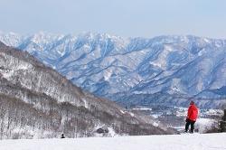 눈 덮힌 북알프스를 바라보며! 나가노 하쿠바 핫포오네 스키장