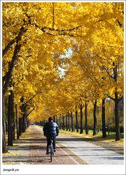 가는 가을이 아쉽다