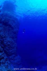 "Simon's Undersea Travel 50 ""U/W view of Okinawa"""