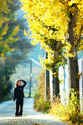 다경이의 가을  - 네번째 이야기