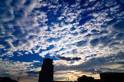 흔한 하늘