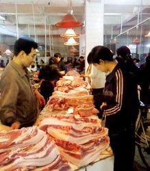 독돼지와 독생강까지...중국에선 뭘 먹지??