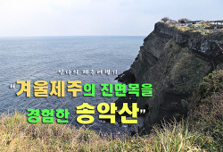 [제주여행/송악산]겨울 제주도의 변화무쌍함을 경험한 송악산