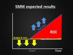 성공적인 Social Marketing?- Social Marketing ROI에 대한 고민