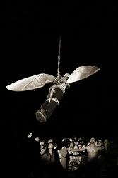 이카루스(Icarus)..