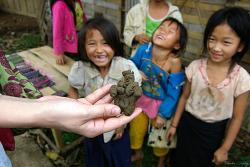 몽(Hmong) 빌리지에서