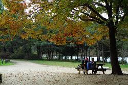 선사유적지에서의  가을 나들이