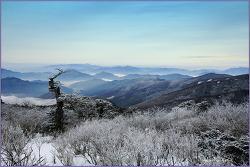 春雪.. 3月의 太白山