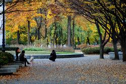 새마을공원