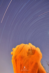 서울숲에서 하늘의 별궤적을 담다[D7000/별궤적/야경/서울풍경/서울야경/전망좋은곳/데이트코스]