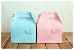 <box008> 아기천사날개-원피스형