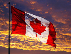 LMO가 무슨 뜻? 돈, 기술 없어도 캐나다 이민하는 첫걸음.