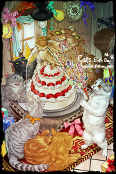 cats birth day