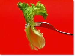 [상추다이어트]상추가 다이어트에 좋은 이유? 제대로 알고 하자