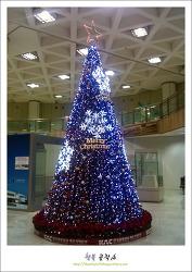 Merry Christmas...제주공항의 트리