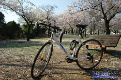 Bicycle _ 삼천리 RC1000