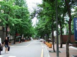 [서울 갈만한 곳] 서울 스쿠터 나들이 3