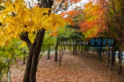 인천시 중앙공원 - 창넘어초록의 국내여행기 제 14 장