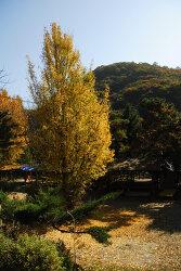 가을과 만난 시간
